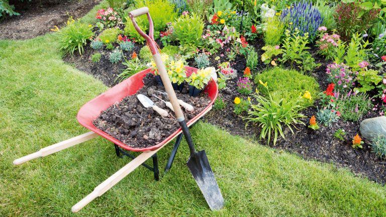 Test and revitalise garden soil