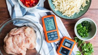 Meat thermometer and ingredients