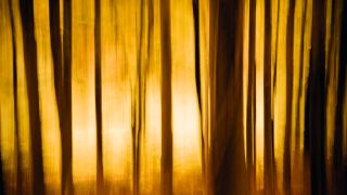 10 reasons why your photos are blurry | TechRadar