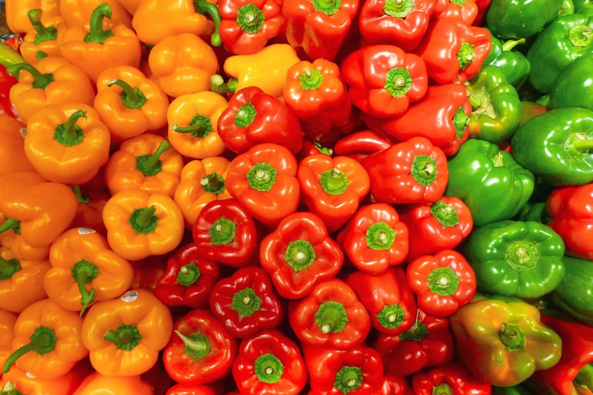 Pepper companion planting – the best plants to grow with peppers