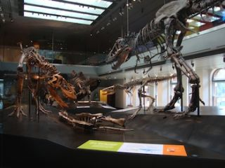 Dinosaur Exhibit Features Electrosonic