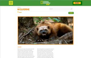 Screenshot of wolverine and accompanying profile