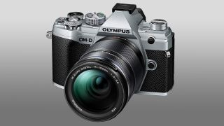 Amazon leaks Olympus OM-D E-M5 Mark III: £1,355.60, OLED EVF, out 18 November