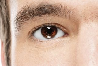 Close-up brown eye of a man