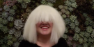 See Kelly Clarkson Rock A Sia Wig And Belt Out Chandelier