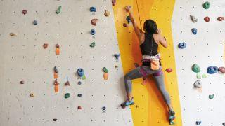 Girl on a climbing wall