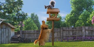 Dug the loveable talking dog barking at the squirrel on top of the bird house