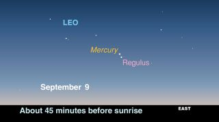 This sky map released by the skywatching publication StarDate magazine shows where to look to see planet Mercury and the bright star Regulus in the pre-dawn sky between Sept. 8 and 11 in 2011.