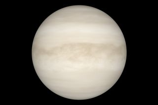 View of Venus