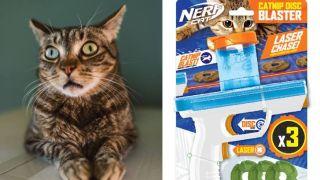 nerf cat catnip blaster