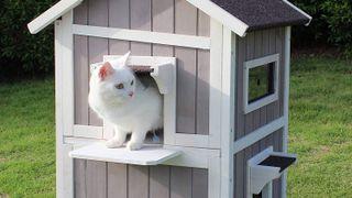 best outdoor cat houses