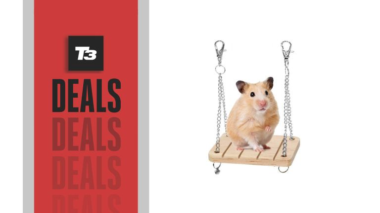 Amazon Prime Day hamster swing deal