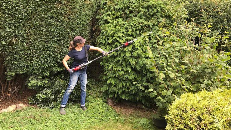 Cobra LRH5024V 24v cordless longreach hedge trimmer