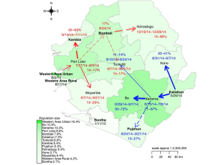This map shows Ebola transmission across Sierra Leone.
