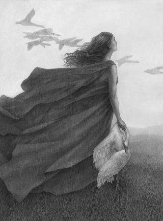 Graphite illustration of a woman holding a dead swan looking up at a flock of birds