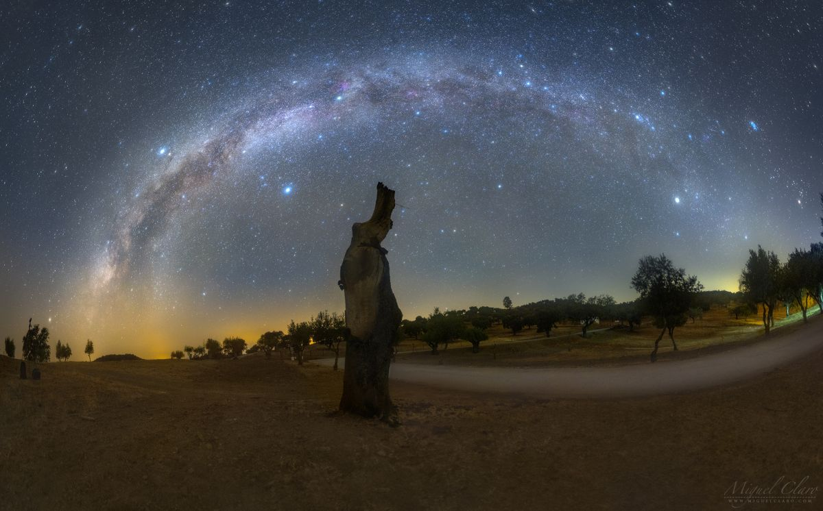 Milky Way's seasonal transition captured in gorgeous night sky photo