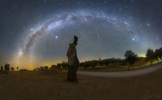 A night scene captured at the end of summer season from the Dark Sky Alqueva reserve in Portugal shows a galactic arc above a dead tree, featuring both parts of the summer and winter Milky Way.