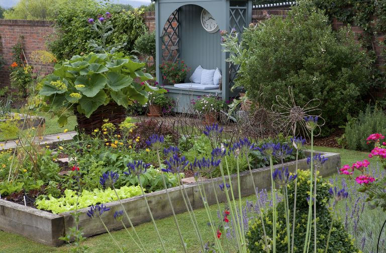 How to plan a kitchen garden with flowers and veg together in raised bed
