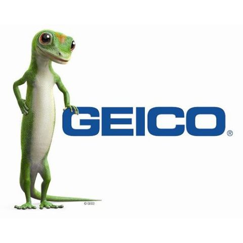 Image result for GEICO