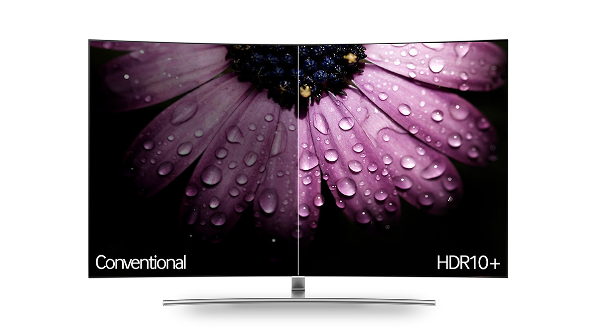An HDR10+ TV with a pink flower on the screen