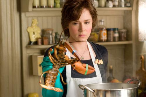 Julie & Julia - Amy Adams plays Julie Powell, the New York office worker who resolved to cook her way through Julia Child's epic book Mastering the Art of French Cooking