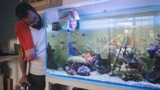 Man checking water in fish tank