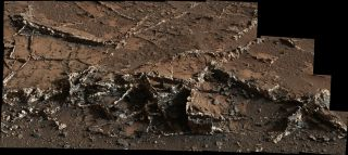 "This photo, taken by NASA's Mars rover Curiosity on March 18, 2015, shows a network of two-tone mineral veins at an area called ""Garden City"" in the foothills of Mount Sharp."