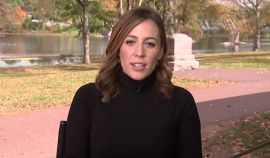 MSNBC Reporter Had Her Broadcast Crashed By Dinosaurs, Check It Out