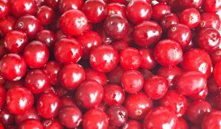 cranberries2-02