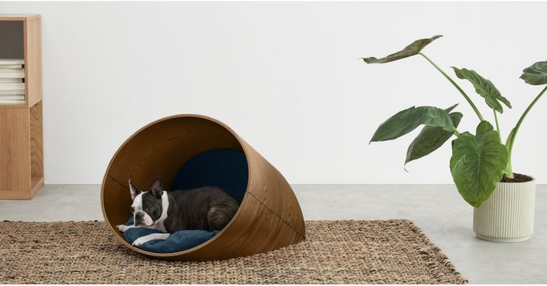 Made.com pet accessories: it has produced a stylish range of beds, blankets, bowls, houses and bags for pets