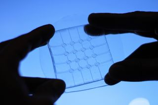 A close-up of the transparent touchpad before it is filled with gel electrodes.