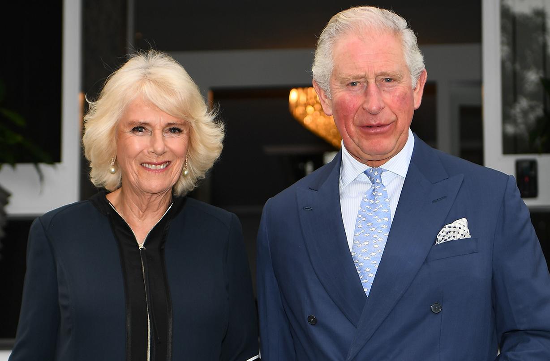 prince charles duchess camilla nhs clap carers video