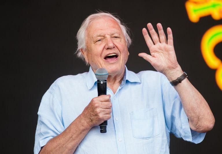 David Attenborough at Glastonbury festival 2019