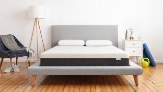 Bear mattress deals