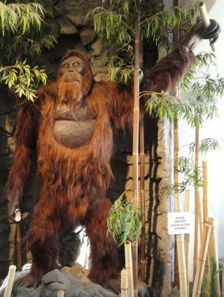 gigantopithecus blacki statue