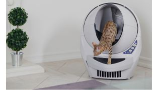 Best self-cleaning cat litter boxes