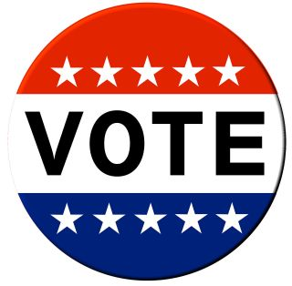 Red white and blue VOTE button