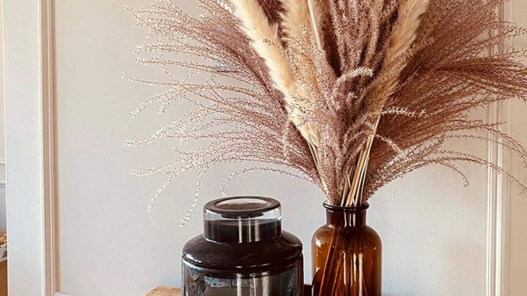 Amazon home decor: Pampered Pampas Natural Dried Pampas Grass in amber glass vase next to candle