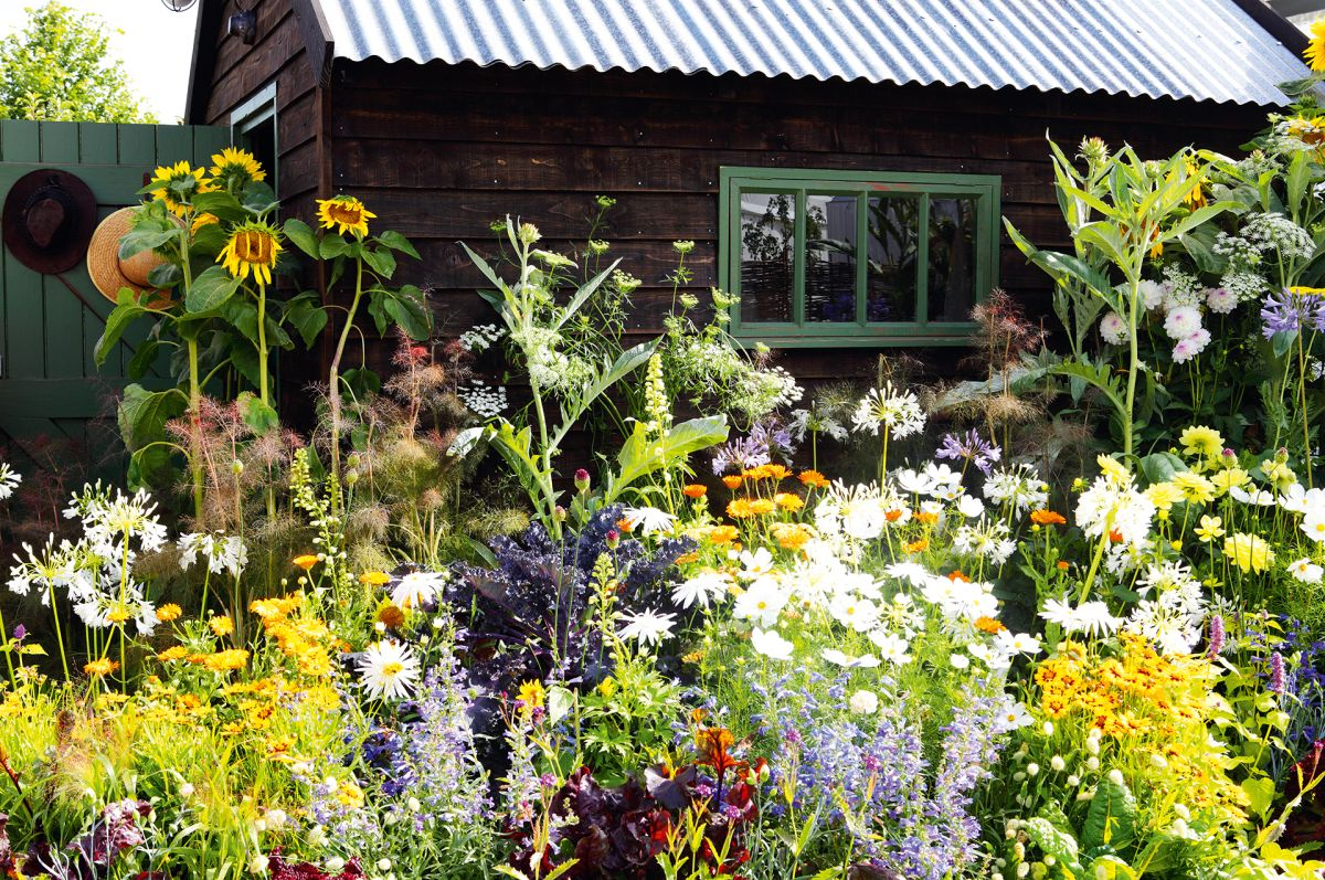 Everything you need to know about summer solstice gardening – with Gardener Scott's help