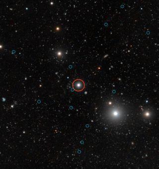 Dark Galaxies Quasar