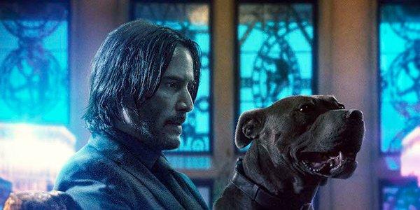 John Wick and his loyal canine companion