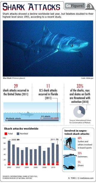 Deaths from shark attack were at their highest level since 1993.