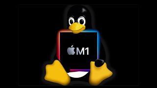 The Linux mascot, Tux, cradles an M1