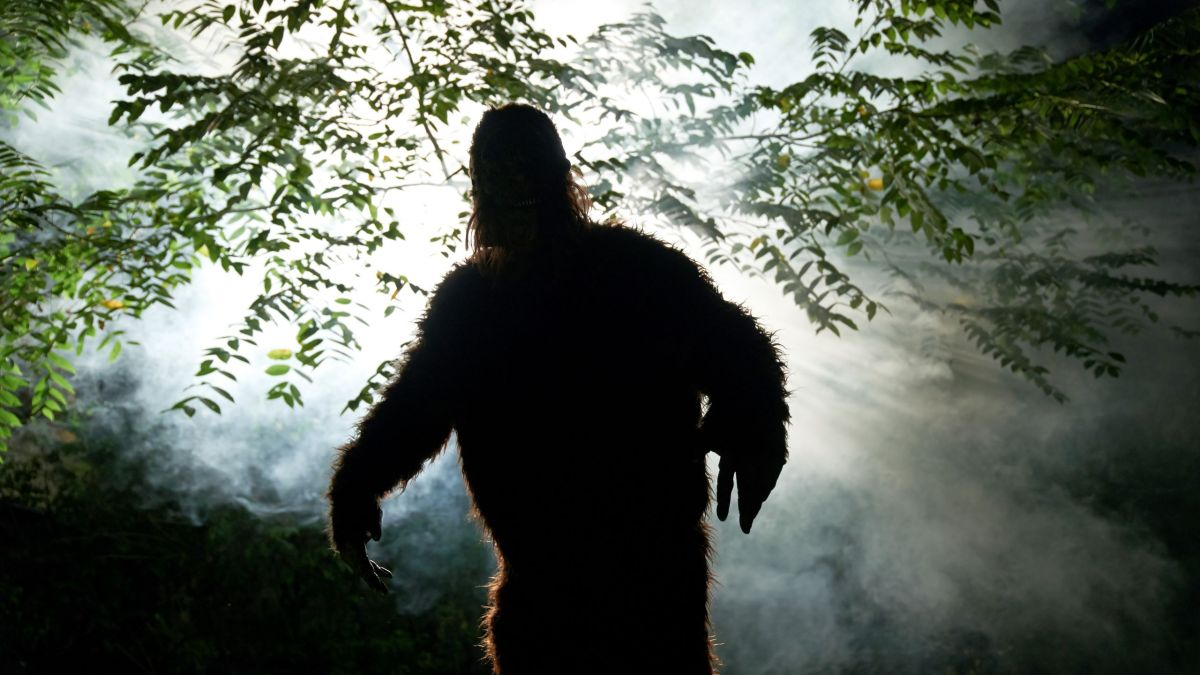Is Bigfoot real? You likely already know the answer.