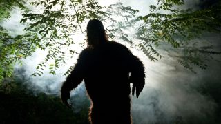 A shadowy image of a Bigfoot or Sasquatch in the forest with light and fog behind it.