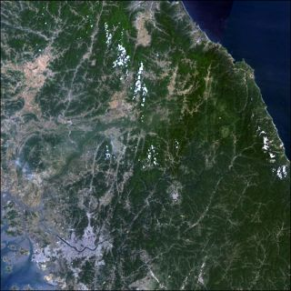 animals, conservation, wildlife, war, peace, South Korea
