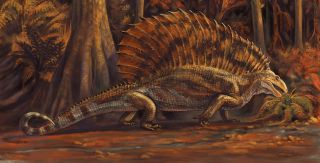 The ancient reptile Gordodon kraineri