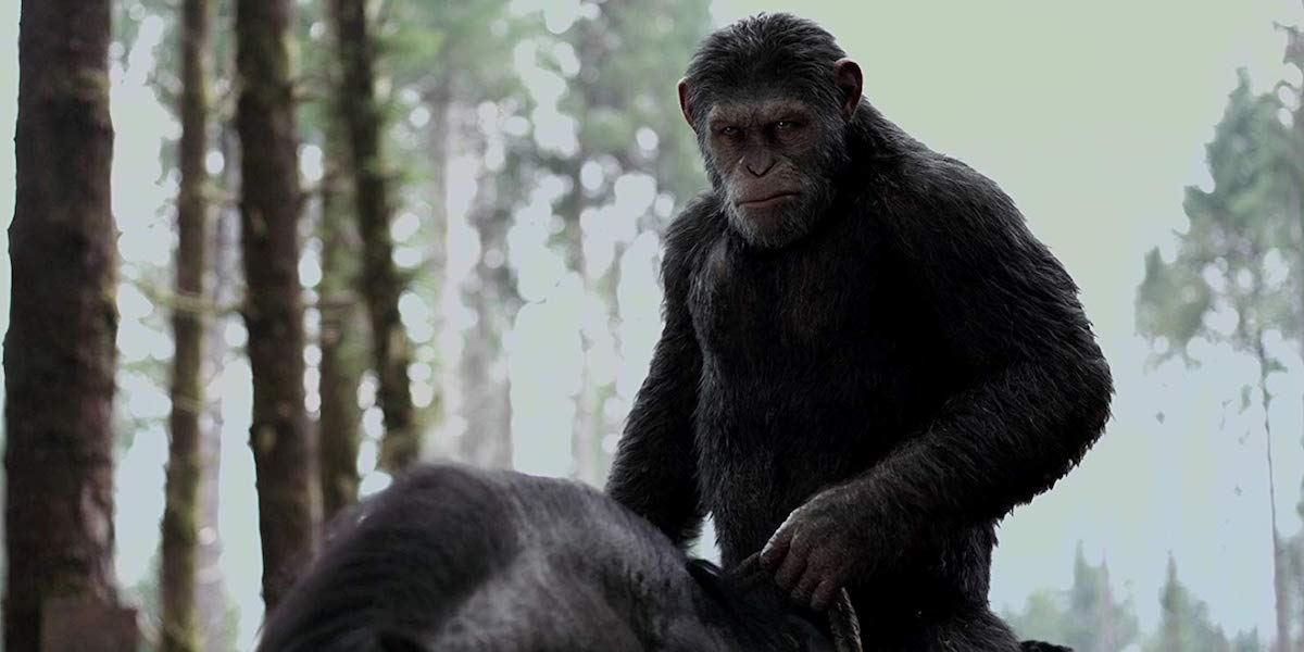 A New Planet Of The Apes Movie Is Happening, But Is It A Sequel Or Reboot?