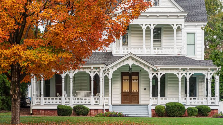large American house in Georgia and tree with autumn leaves