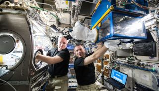 Astronauts Scott Kelly and Terry Virts
